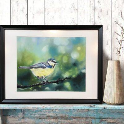 Billeder af fugle